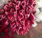 Тюльпаны ортом и в розницу