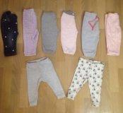 Много фирменных штанишек