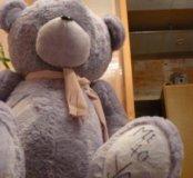 Большой медведь Me to You