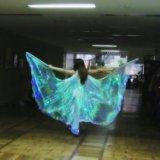 Аренда светодиодных крыльев