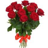 Розы на день влюблённых от 9шт