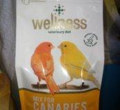 Wellness для канареек
