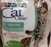 Cat chow оптом