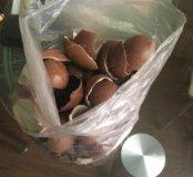 Шоколад киндер сюрприз