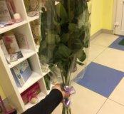 Розовые розы 9 штук