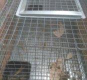 Клетка для морской свинки или шиншилы