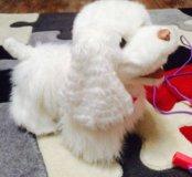 Интерактивный щенок gogo от Hasbro