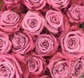 5 фиолетовых роз