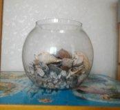 аквариум для рыбы, и ракушки