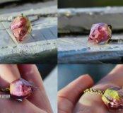 Новая подвеска кристалл с настоящей розой ручная р