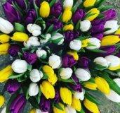 Цветы 35 тюльпанов спб