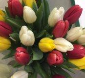 19 тюльпанов миксиком в упаковке