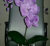 Орхидея ручной работы из пластной замши