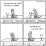 Кот на час