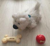 Детская игрушка, собачка, щенок Бакстер