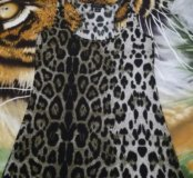 Топ леопард