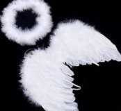 Крылья из перьев