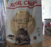 Royal kanin мэйн кун adult корм для кошек