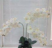 Орхидеи имитация.Топиарии.Цветочные композиции