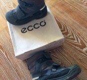 Продам ботинки Экко размер 35