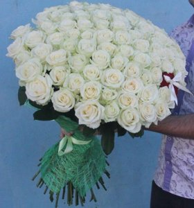 Доставка роз в Санк-Петербурге, Питере