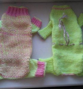 Новый свитер для животного