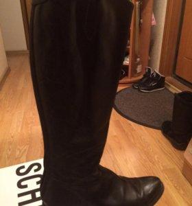 Кожаные сапоги,фирмы FABI ,37 размер,демисезон