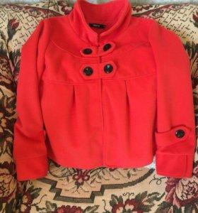Пальто, куртка весна-лето