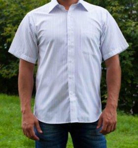 Новая рубашка Burberry р.39,40,41,42,43,44