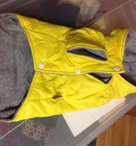 Куртка для собак М