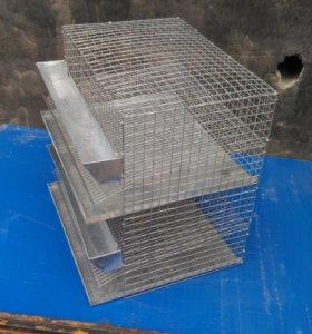 Клетка на 40 перепелов