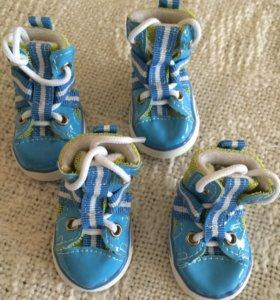 Обувь для собаки р-р 4