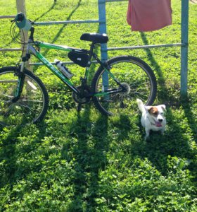 Велосипед Stels navigator 6100