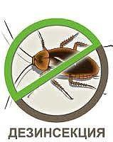 Травка насекомых
