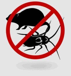 Уничтожение насекомых вредителей (защитим ваш дом)