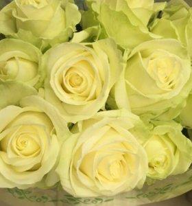 Белые розы спб букет из белых роз
