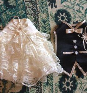 Одежда для Быков