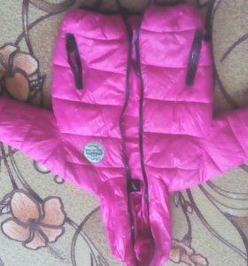 Детская куртка весна и осень