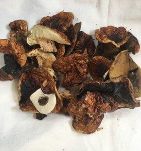 Белые грибочки сухие
