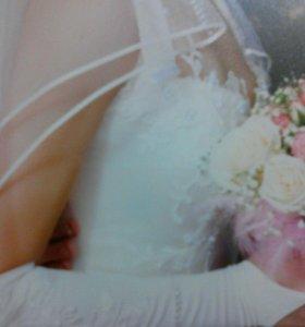 Продам красивое свадебное платье,цвет шампань.