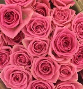 Розовая роза спб