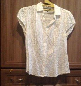 Новая блузка Ostin xs. S.
