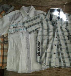 Рубашки в д/с р. 116-128
