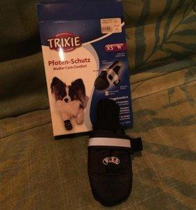 Тапочки для собаки