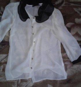 блузки s