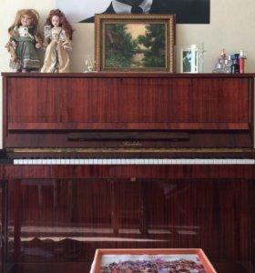Пианино Richter