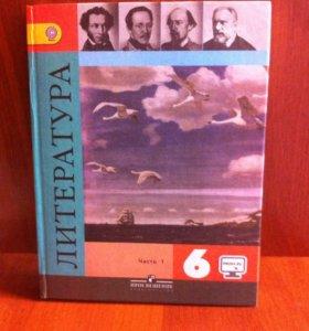 Литература(6кл.,ч.1)