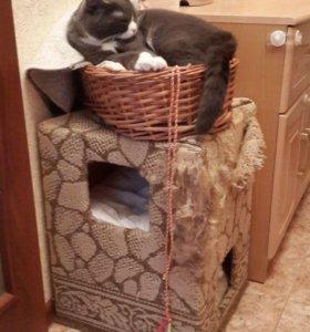Домик-когтеточка для котов