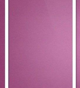 Стекло для iPhone 5/5S/5C белое