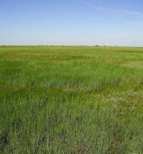 Земельный участок 15Га